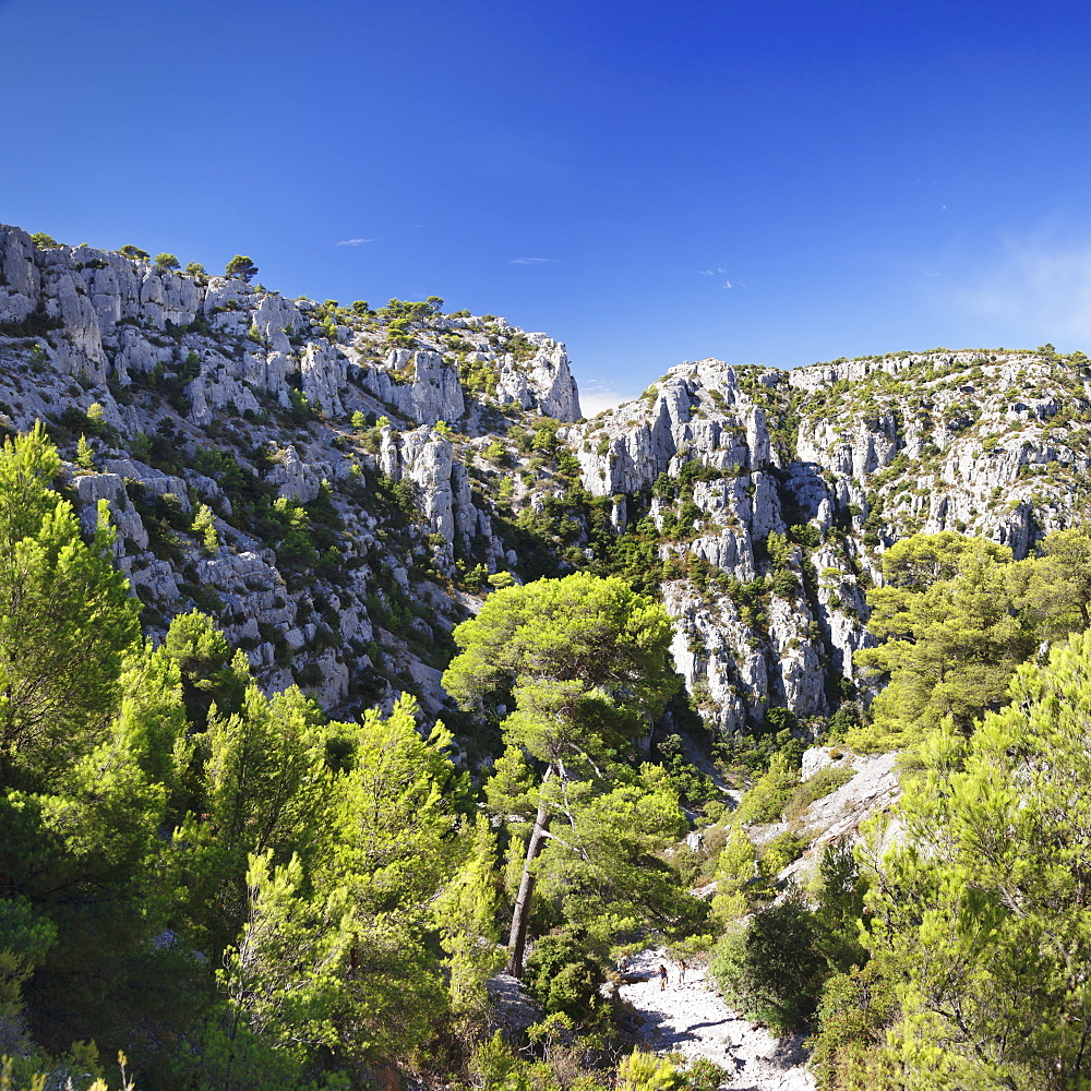 People hiking through rocky landscape of les Calanques, National Park, Cassis, Provence, Provence-Alpes-Cote d'Azur, Southern France, France, Europe