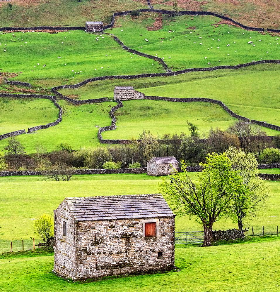 Hay barns, Muker, Swaledale, Yorkshire Dales, Yorkshire, England, United Kingdom, Europe - 1209-65