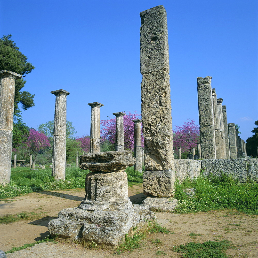 View towards the Palaestra (wrestling school), archaeological site, Olympia, UNESCO World Heritage Site, Greece, Europe