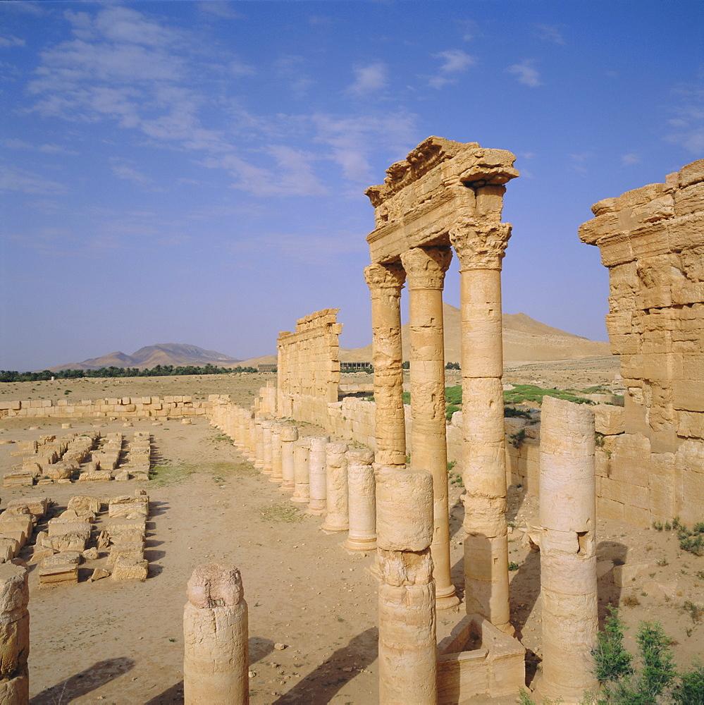 Graeco-Roman Agora, Palmyra, Syria, Middle East
