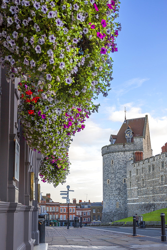 Hanging flowers in Windsor high street with Windsor Castle in the background, Windsor, Berkshire, England, United Kingdom, Europe - 10-420