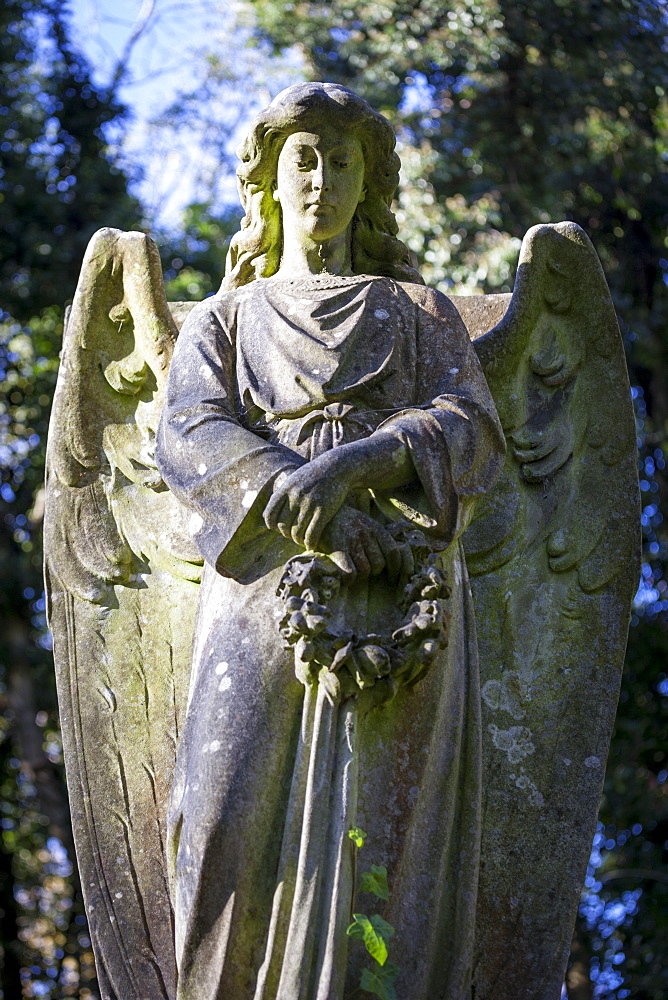 Angel holding wreath, Highgate Cemetery west, London, England, United Kingdom, Europe - 10-446