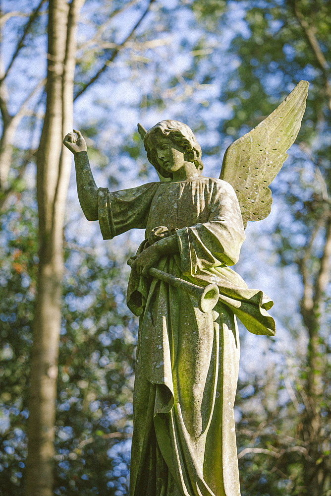 Statue of an angel with a trumpet, Highgate Cemetery west, London, England, United Kingdom, Europe - 10-447
