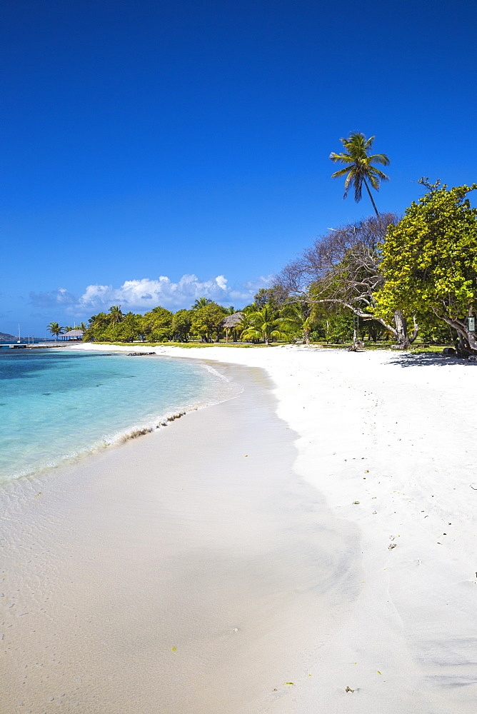 Petit St. Vincent, The Grenadines, St. Vincent and The Grenadines, West Indies, Caribbean, Central America