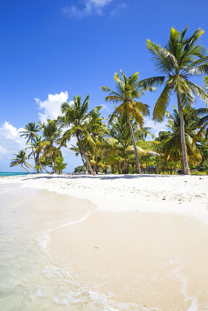 Petit Bateau, Tobago Cays, The Grenadines, St. Vincent and The Grenadines, West Indies, Caribbean, Central America