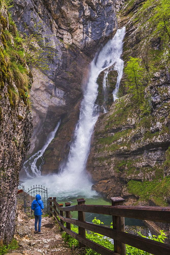 Tourist at Savica Waterfall near Lake Bohinj, Triglav National Park, Julian Alps, Slovenia, Europe