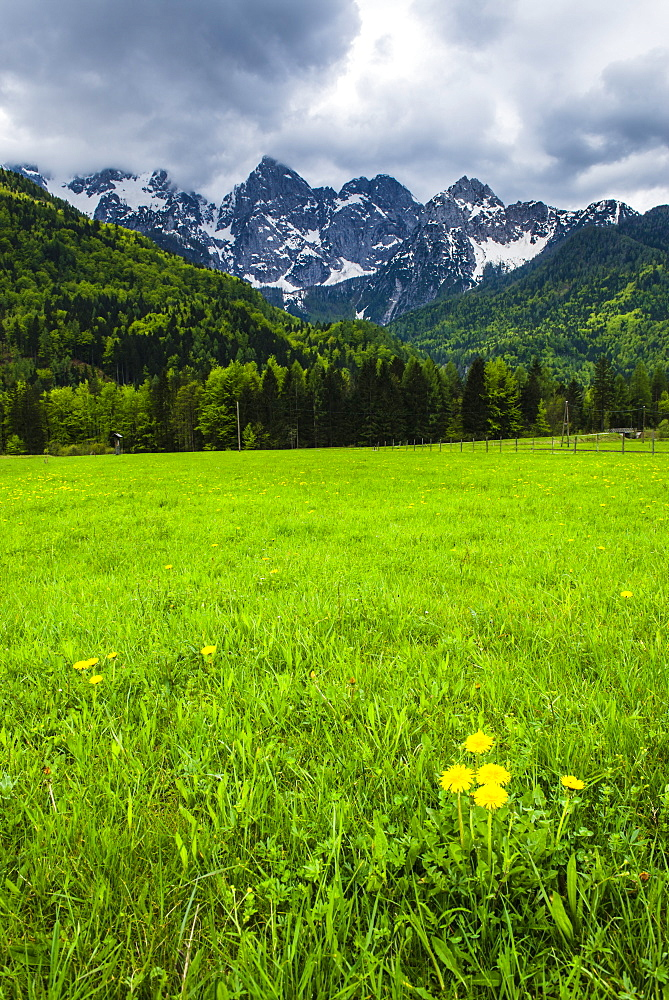 Juilan Alps just outside Kranjska Gora, Triglav National Park, Upper Carniola, Slovenia, Europe