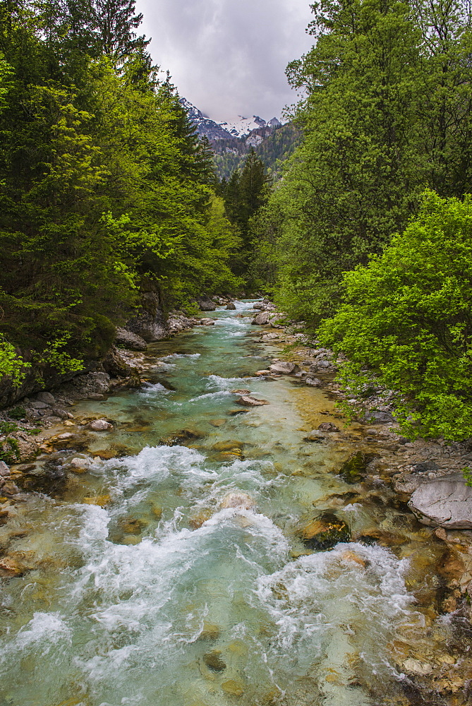 Soca River in the Soca Valley, Triglav National Park (Triglavski Narodni Park), Julian Alps, Slovenia, Europe
