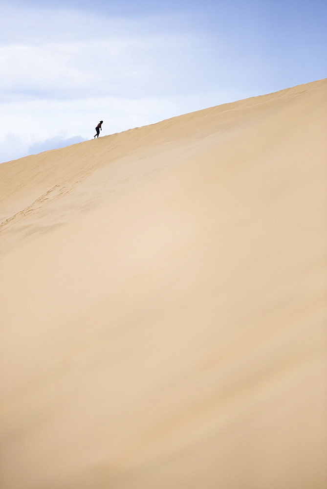 Tourist climbing Te Paki Sand Dunes on 90 Mile Beach, Northland, North Island, New Zealand, Pacific