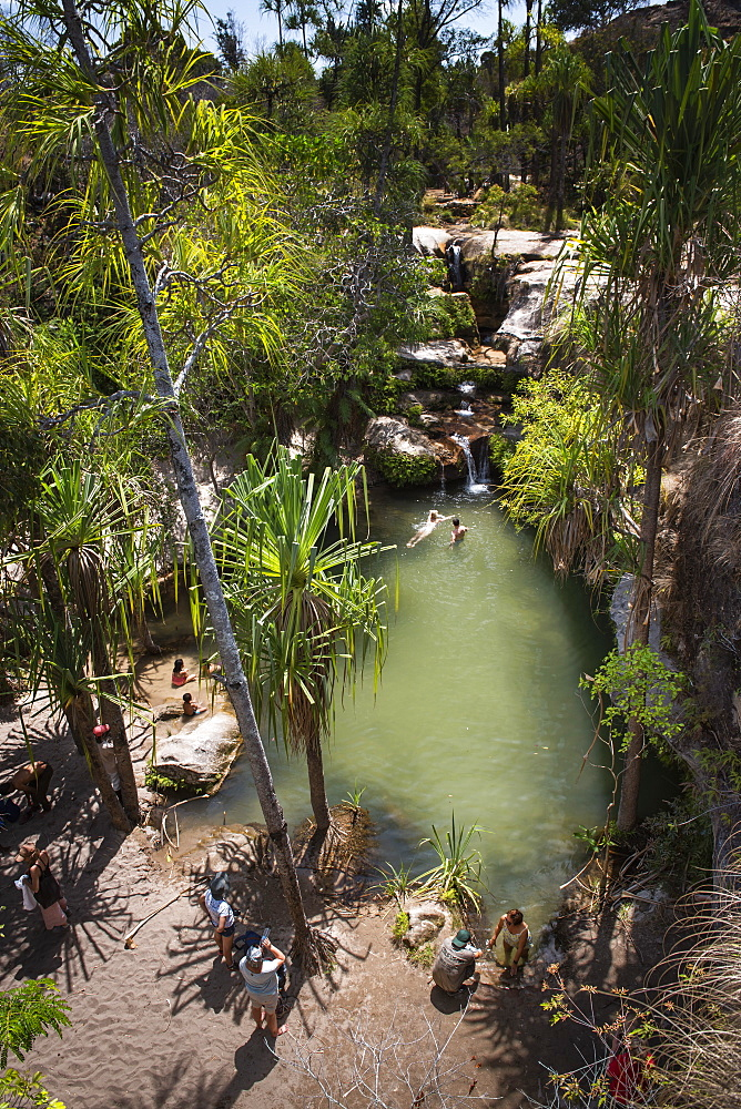 Oasis in Isalo National Park, Ihorombe Region, Southwest Madagascar, Africa - 1109-3559