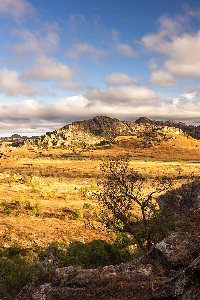 Isalo National Park landscape at sunrise, Ihorombe Region, Madagascar, Africa - 1109-3566