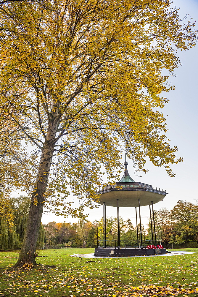 Autumn in Regents Park, one of the Royal Parks of London, England - 1109-3719