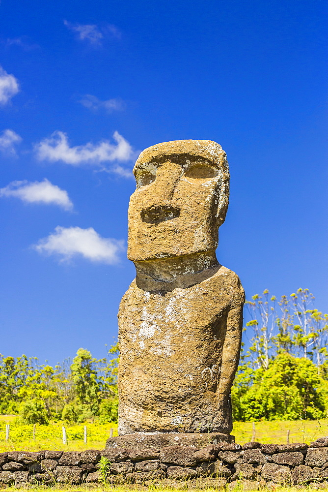 Detail of a moai at Ahu Akivi, the first restored altar on Easter Island (Isla de Pascua) (Rapa Nui), UNESCO World Heritage Site, Chile, South America