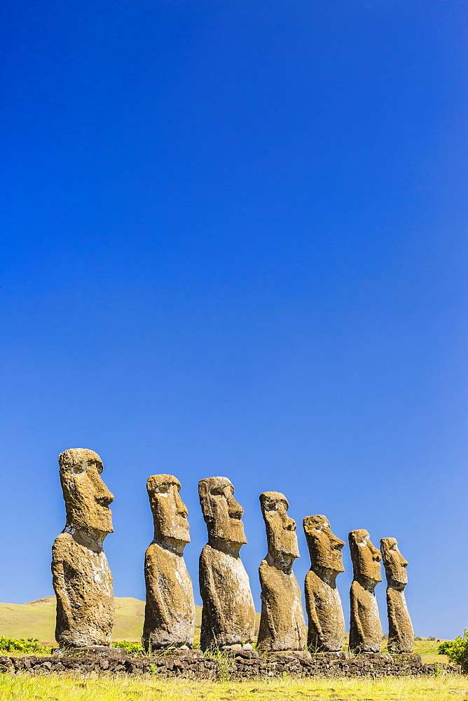 Seven Moai at Ahu Akivi, the first restored altar on Easter Island (Isla de Pascua) (Rapa Nui), UNESCO World Heritage Site, Chile, South America