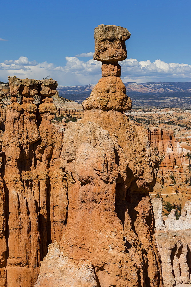 View of Thor's Hammer from the Navajo Loop Trail in Bryce Canyon National Park, Utah, USA. - 1112-3520