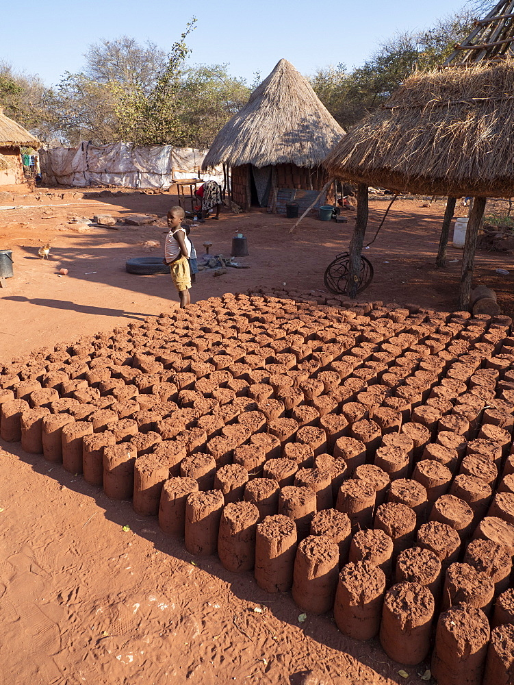 Mud bricks drying in the sun in the fishing village of Musamba, on the shoreline of Lake Kariba, Zimbabwe.