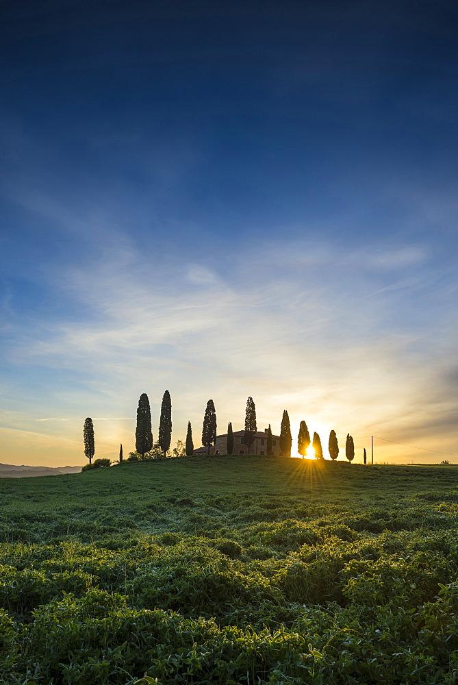landscape near Pienza, Val d`Orcia, province of Siena, Tuscany, Italy, UNESCO World Heritage - 1113-104554