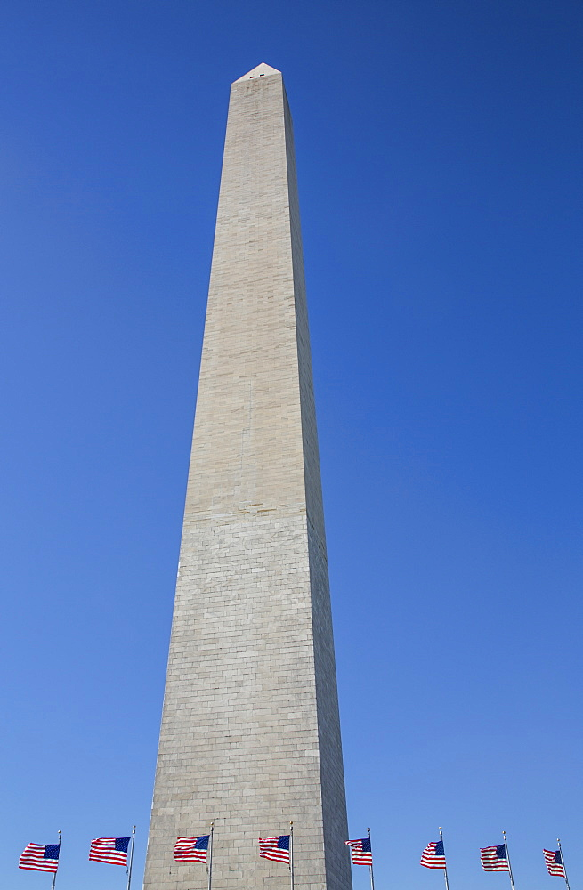 Washington Monument with American flags below, Washington DC, United States of America - 1116-47311