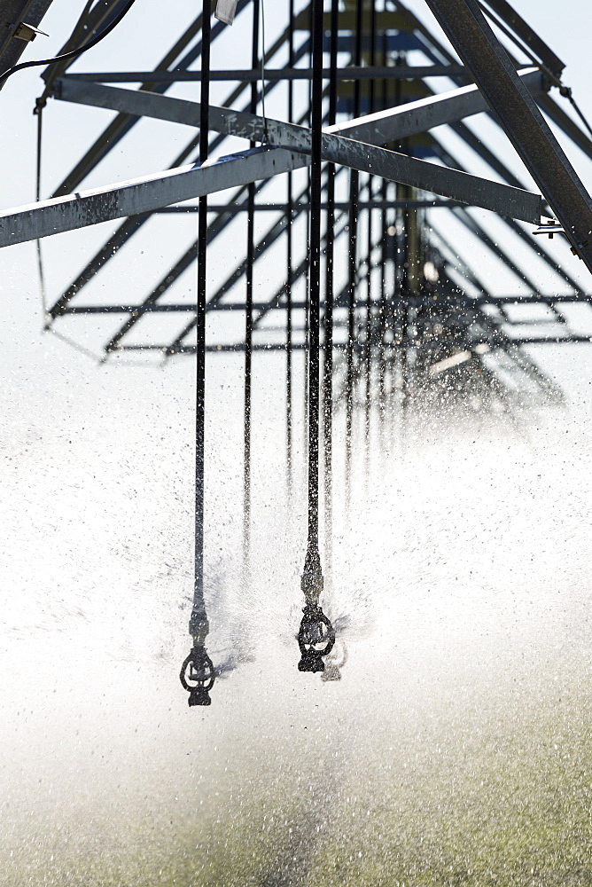 Close-up of sprinkler heads spraying a field, Mossleigh, Alberta, Canada