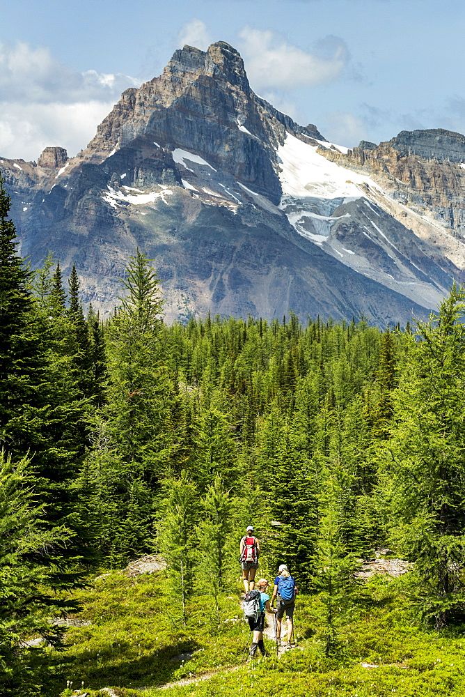 Three female hikers on pathway in a mountain meadow with mountain, blue sky and clouds in the background, British Columbia, Canada
