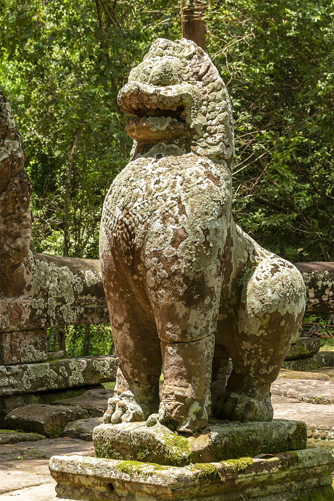 Stone lion covered in lichen, Banteay Kdei, Angkor Wat, Siem Reap, Siem Reap Province, Cambodia