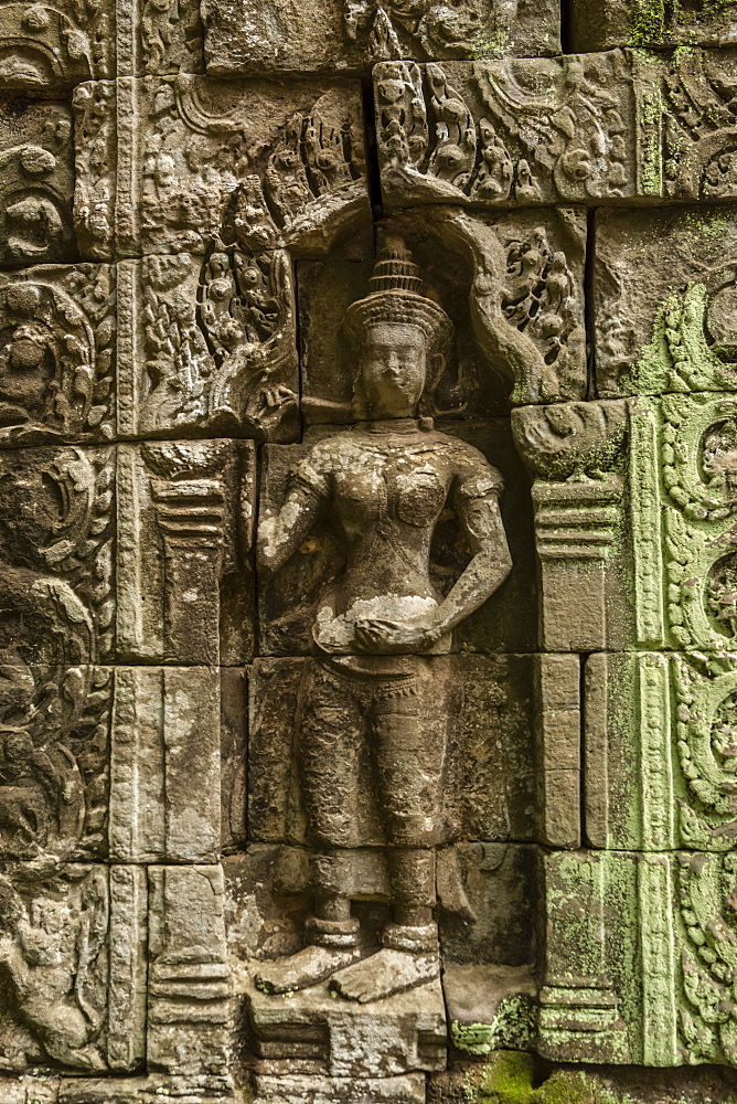 Sculpture in stone wall of ruined temple, Ta Prohm, Angkor Wat, Siem Reap, Siem Reap Province, Cambodia