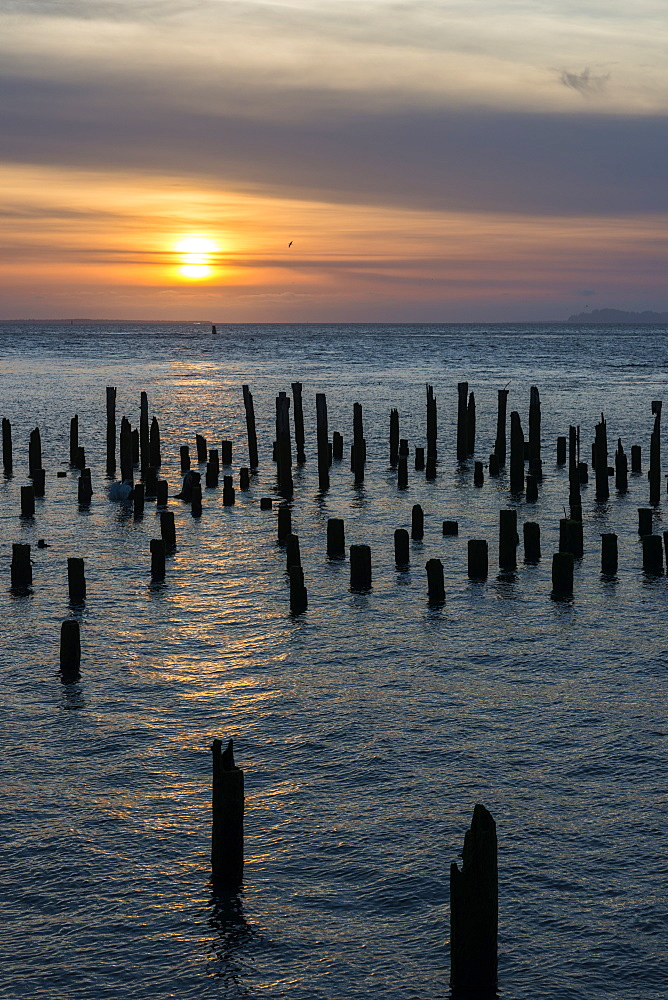 The sun sets over old pilings in the Columbia River, Astoria, Oregon, United States of America