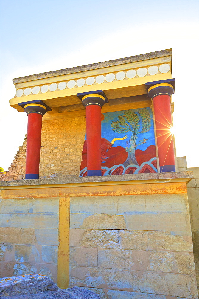 Bull And Olive Tree Fresco, The Minoan Palace of Knossos, Knossos, Heraklion, Crete, Greek Islands, Greece, Europe - 1126-1565