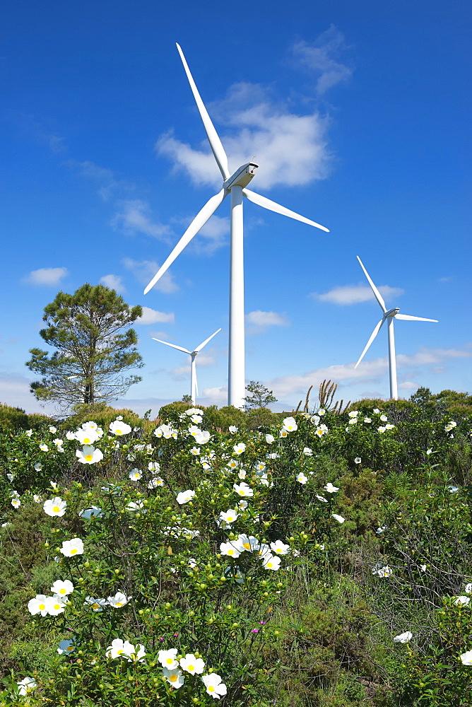 Wind turbines, Western Algarve, Portugal, Europe