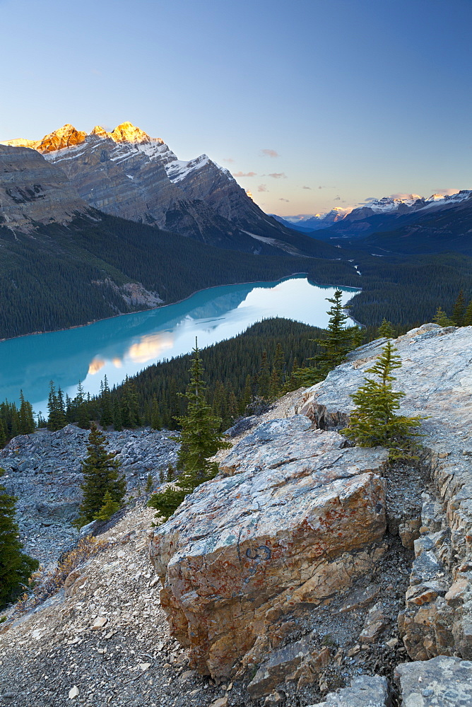 Peyto Lake at sunrise, Banff National Park, UNESCO World Heritage Site, Rocky Mountains, Alberta, Canada, North America