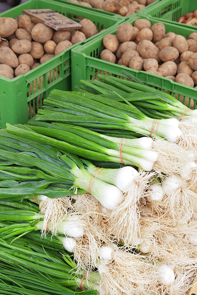 Onions and potatoes at a market stall, weekly market, market place, Esslingen, Baden Wurttemberg, Germany, Europe *** Local Caption *** curves adjustment