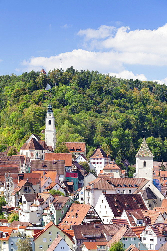 Old town with Stiftskirche Heilig Kreuz collegiate church, Horb am Neckar, Black Forest, Baden Wurttemberg, Germany, Europe