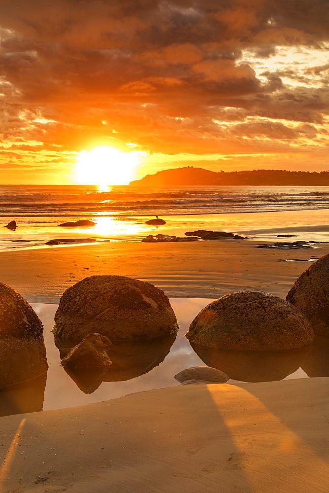 Moeraki Boulders at sunrise, Otago, South Island, New Zealand, Pacific