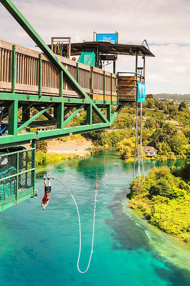 Bungee Jumping, Waikato River, Taupo, Waikato, North Island, New Zealand, Pacific - 1160-4507