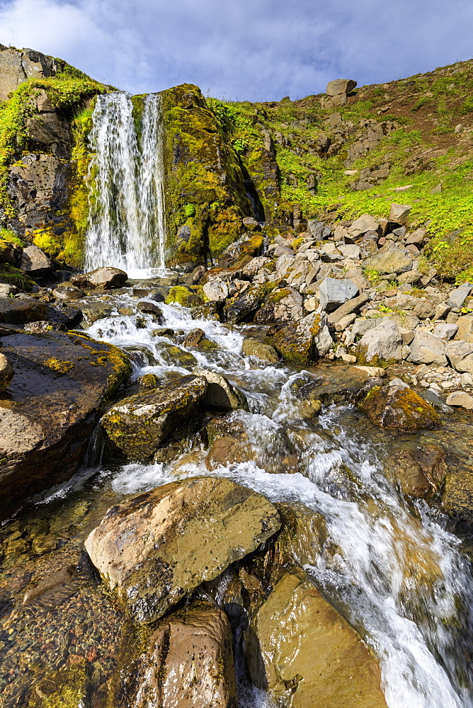 Waterfall, mosses and wild flowers in lush, green Hvanneyrarskal, hanging valley above Siglufjordur, Summer, North Iceland - 1167-2077