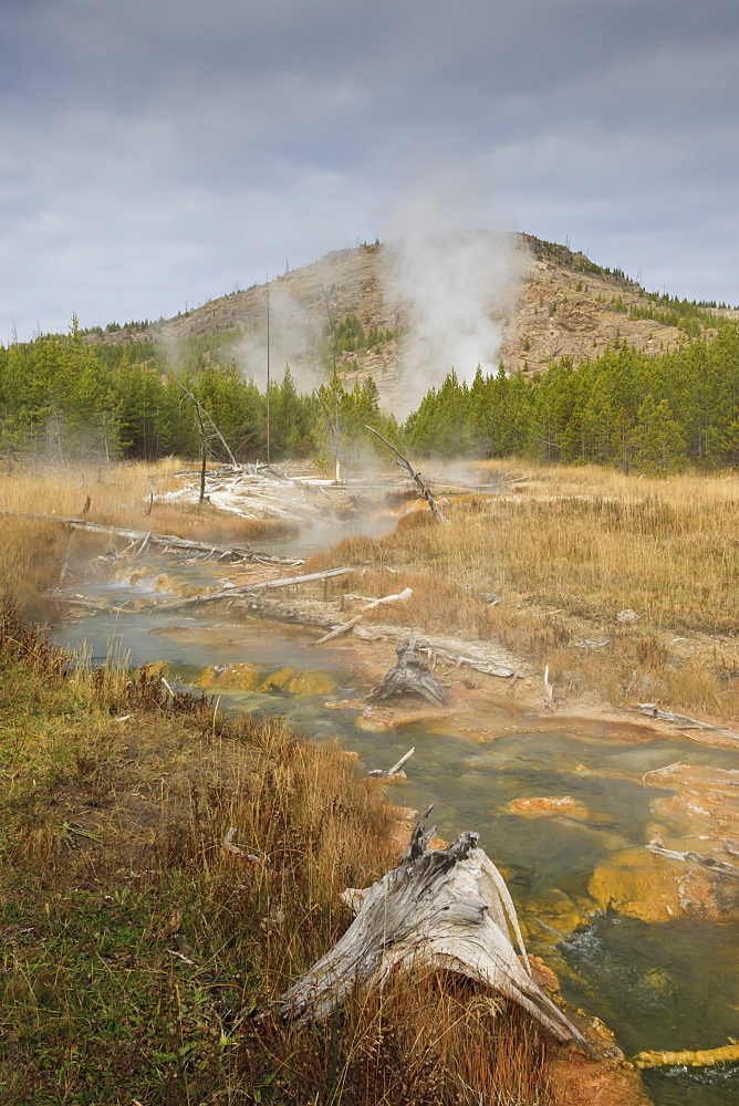 Midway Geyser Basin thermal activity from the Fairy Creek Trail, Yellowstone National Park, UNESCO World Heritage Site, Wyoming, United States of America, North America