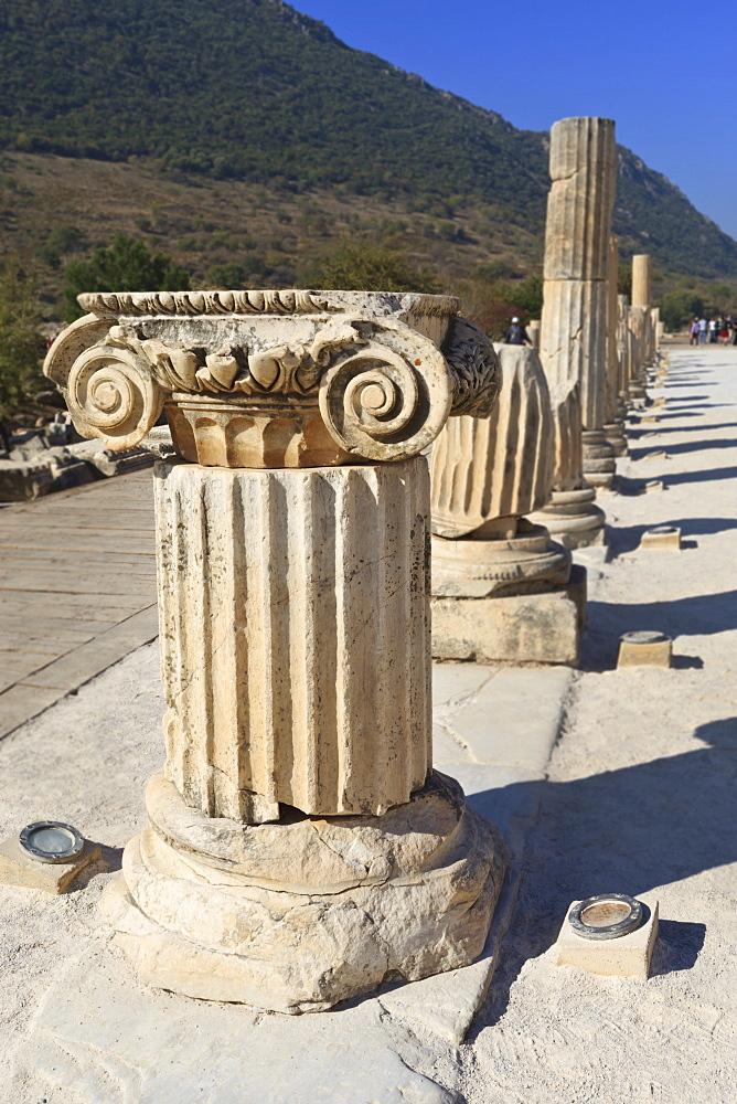 Ionic column, ancient Ephesus, near Kusadasi, Anatolia, Turkey, Asia Minor, Eurasia