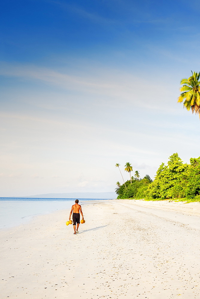 Indonesia, Spice Islands, Manawoka island. A local man carrying raw coconuts along a pristine beach
