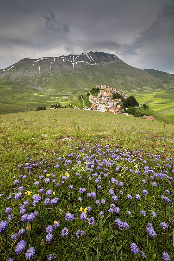 Colorful flowers in bloom frame the medieval village Castelluccio di Norcia Province of Perugia Umbria Italy Europe