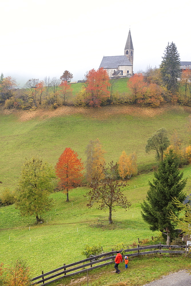 Mist and colourful trees surround the alpine church in the fall, St. Magdalena, Funes Valley, South Tyrol, Dolomites, Italy, Europe