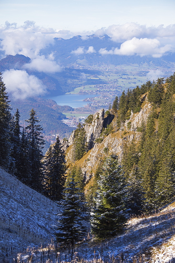 Frost on trees in the woods of the Ammergau Alps Tegelberg Füssen Bavaria Germany Europe