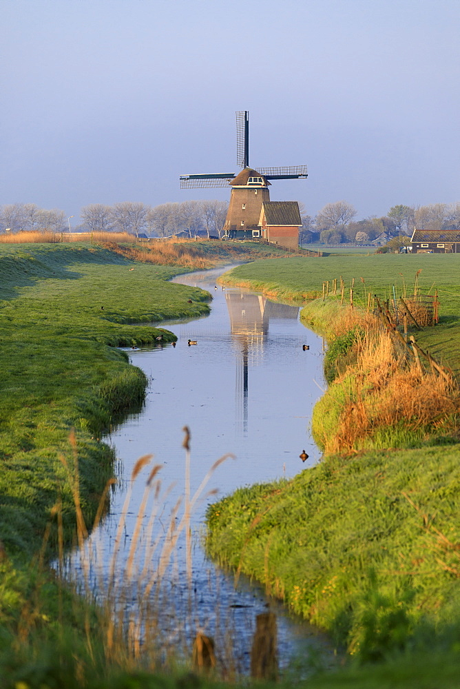 Typical windmill reflected in the canal at dawn, Berkmeer, municipality of Koggenland, North Holland, The Netherlands, Europe