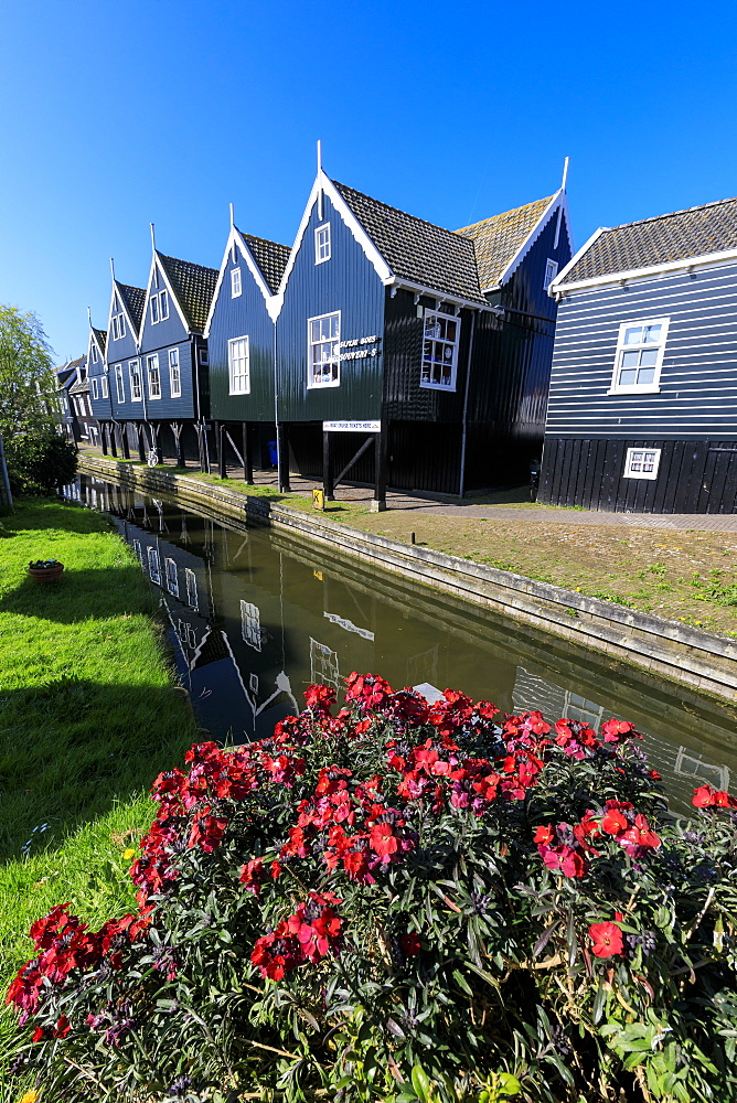 Wooden houses reflected in the canal framed by flowers in the village of Marken, Waterland, North Holland, The Netherlands, Europe