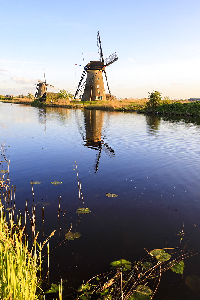 Typical windmills reflected in the canal framed by grass in spring, Kinderdijk, UNESCO World Heritage Site, Molenwaard, South Holland, The Netherlands, Europe