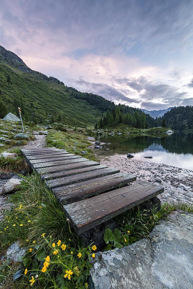 Wood walkway on the shore of Lake Cavloc, Maloja Pass, Bregaglia Valley, canton of Graubünden, Engadine,Switzerland