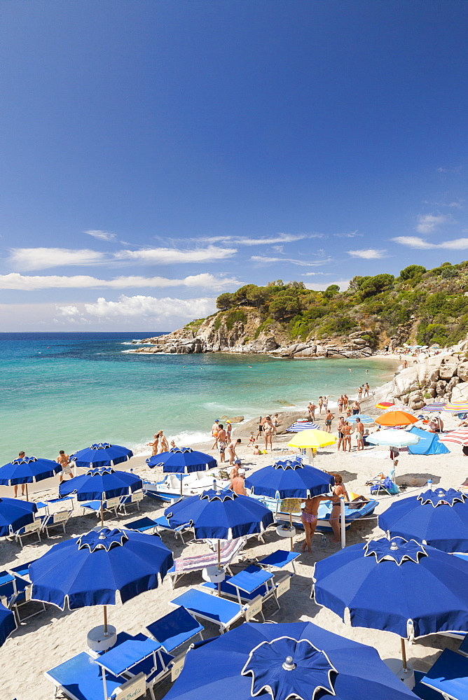 Sunbeds and beach umbrellas, Cavoli Beach, Marciana, Elba Island, Livorno Province, Tuscany, Italy, Europe
