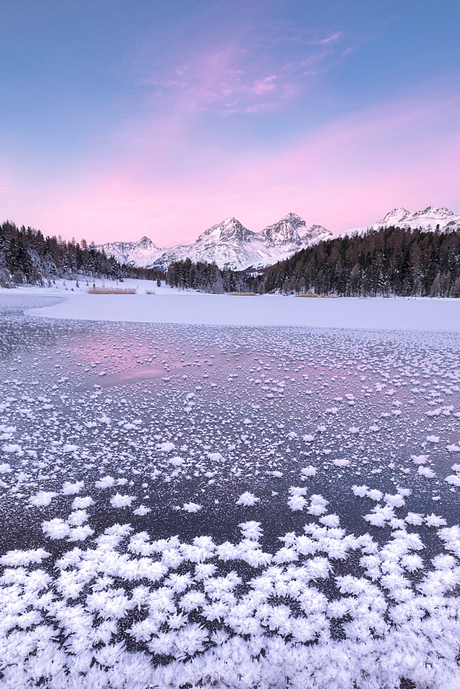 Ice crystals, Lej da Staz, St. Moritz, Engadine, Canton of Graubunden (Grisons), Switzerland, Europe