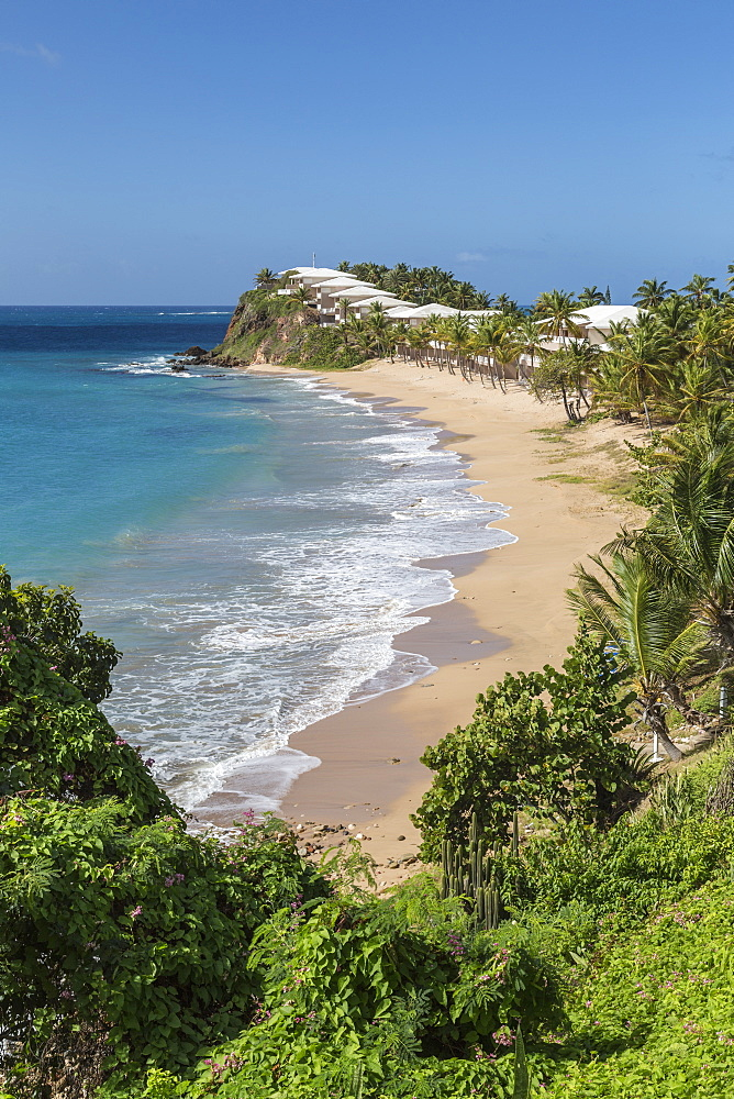 View of the beach in Carlisle where among the vegetation was built a prestigious resort crowded with tourists all year round, St. Johns, Antigua, Leeward Islands, West Indies, Caribbean, Central America