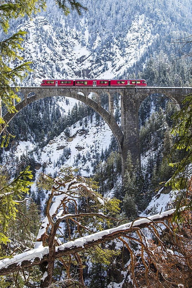 The Bernina Express crossing the Wiesen Viaduct in the Swiss Canton of Graubunden, Switzerland, Europe