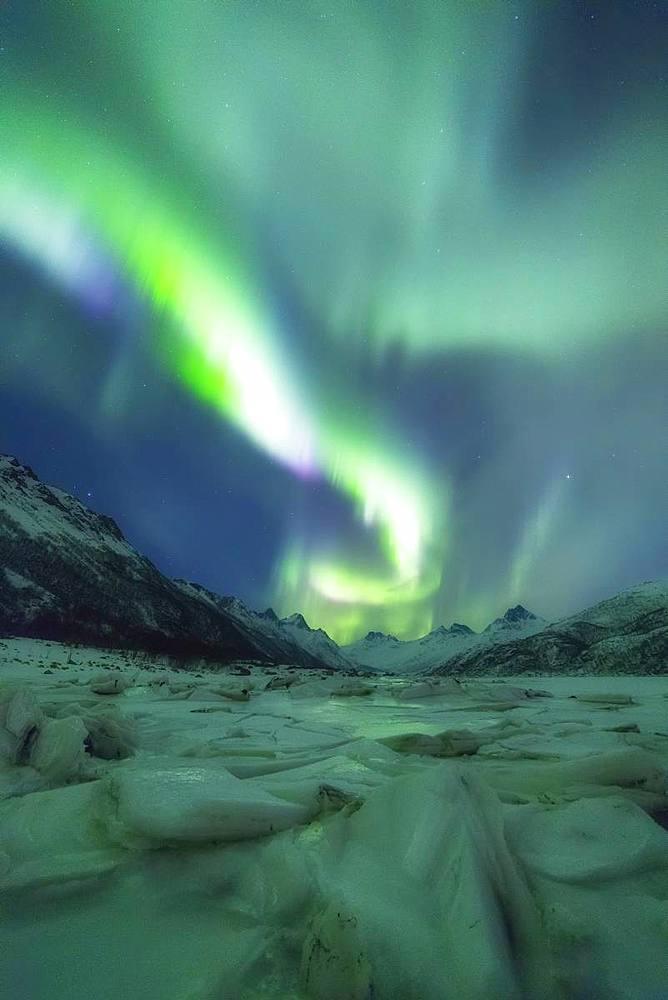 Northern Lights (Aurora borealis), Olderfjorden, Svolvaer, Lofoten Islands, Nordland, Norway, Europe